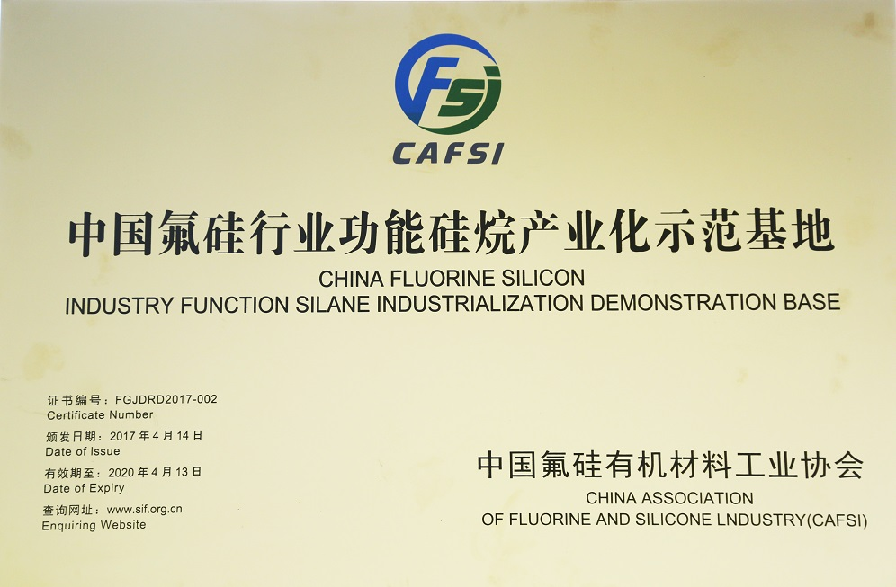Fluorosilicone demonstration base